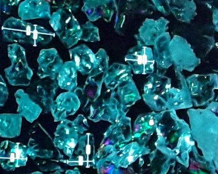 aplicaciones microscopio digital